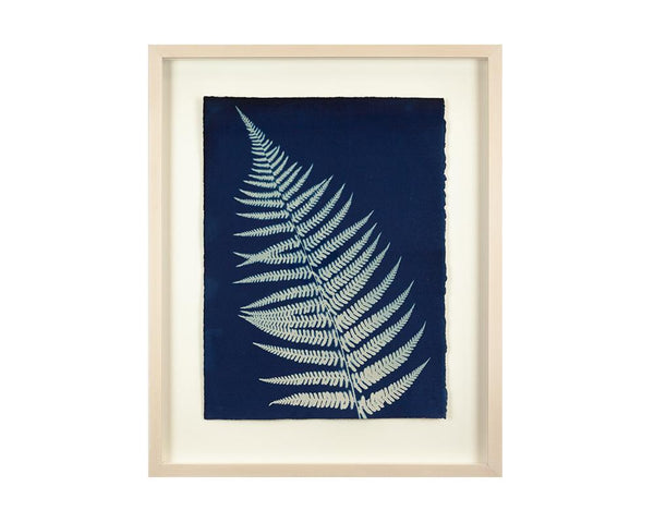 Limited Edition Framed Cyanotype - 5