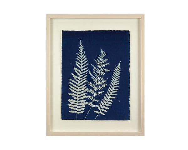 Limited Edition Framed Cyanotype - 7