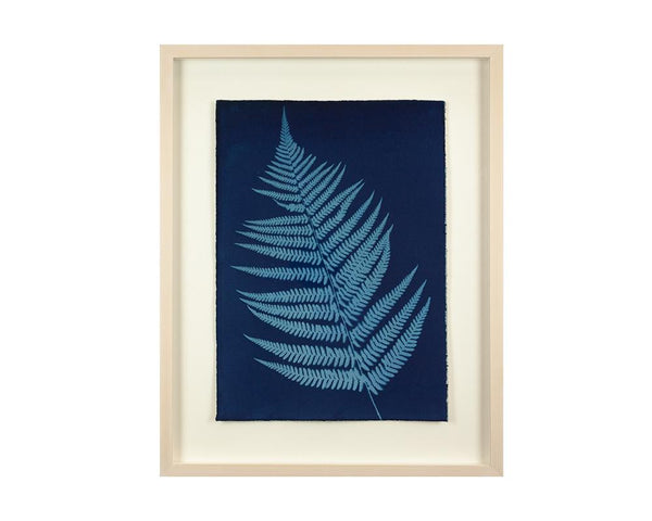 Limited Edition Framed Cyanotype - 8