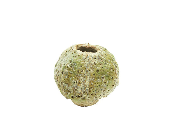 Potterie Textured Green Vase