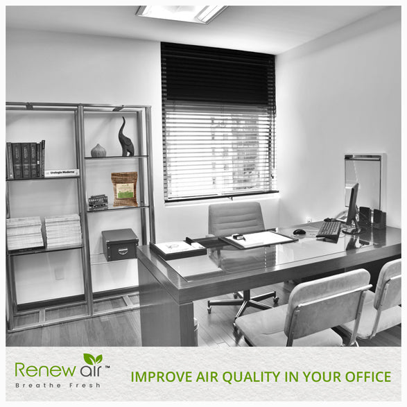 Improve Air Quality in your Office