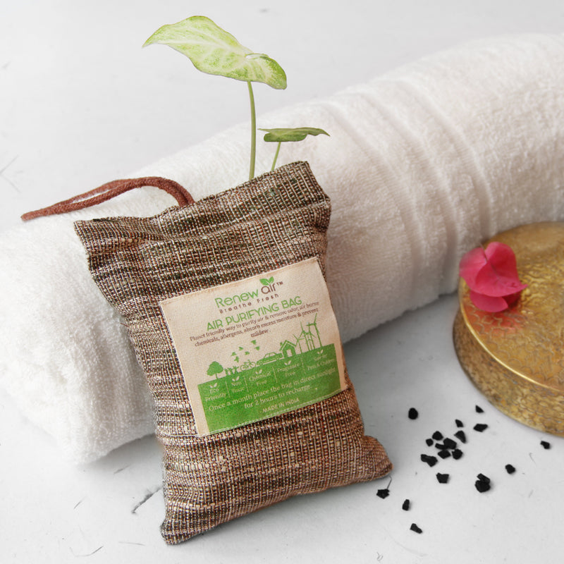 RenewAir Activated Coconut Charcoal Natural Air Purifier (200 Gram)