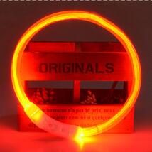 LED Nightlight Collar