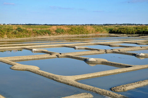 Salt Ponds Guerande