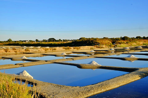Guerande Salt Marshes