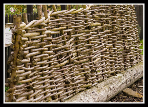 Wattle Fence Replica
