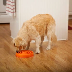 Outward Hound Fun Feeder Bowl Orange Mini - Pet Star