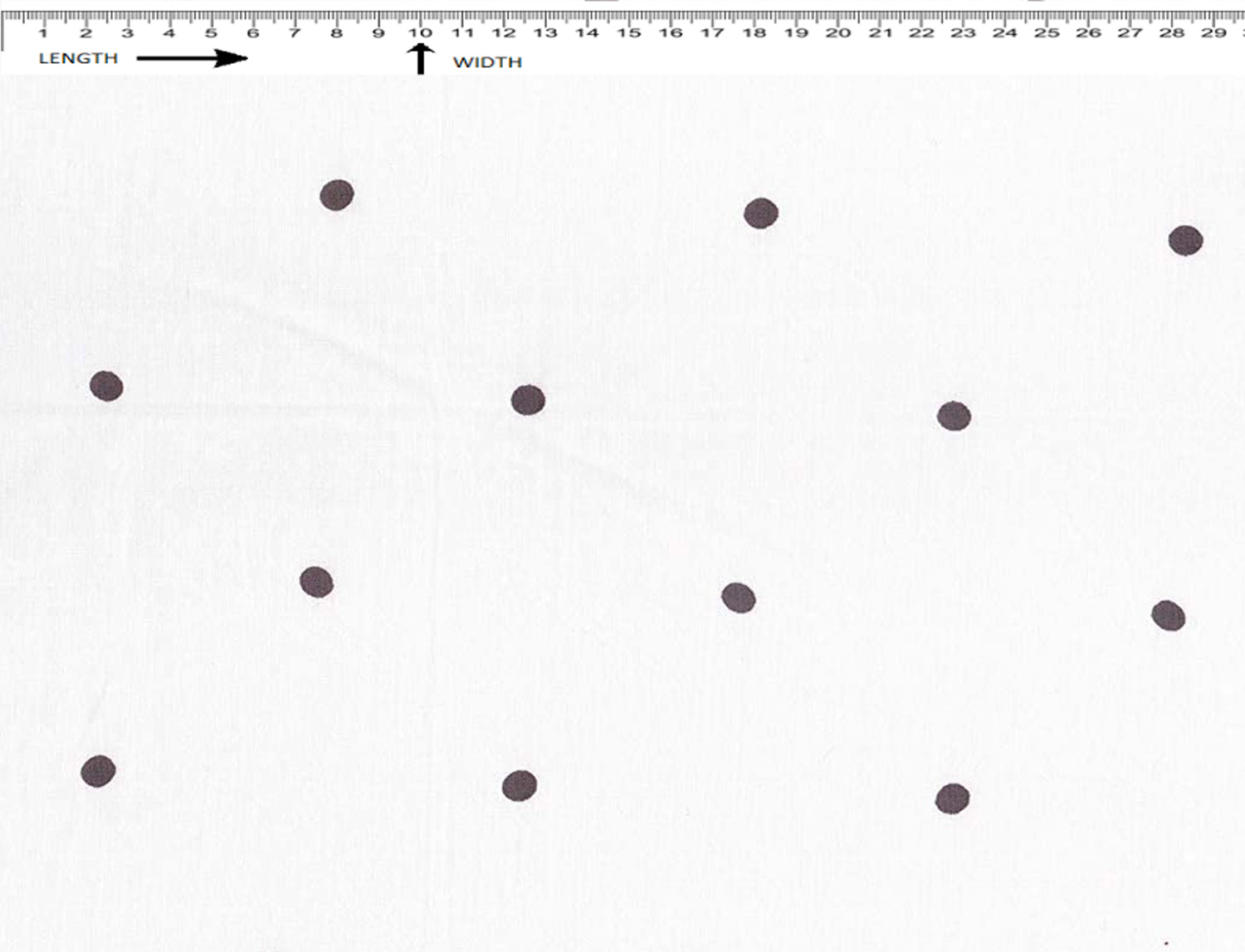 DOT PRINT { SUN WHITE-BLACK }  (Cambric)