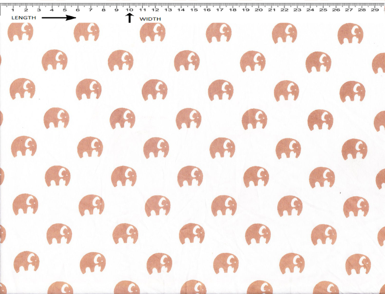 ELEPHANT PRINT { Sun White - Rust Brown }  (40's Poplin)