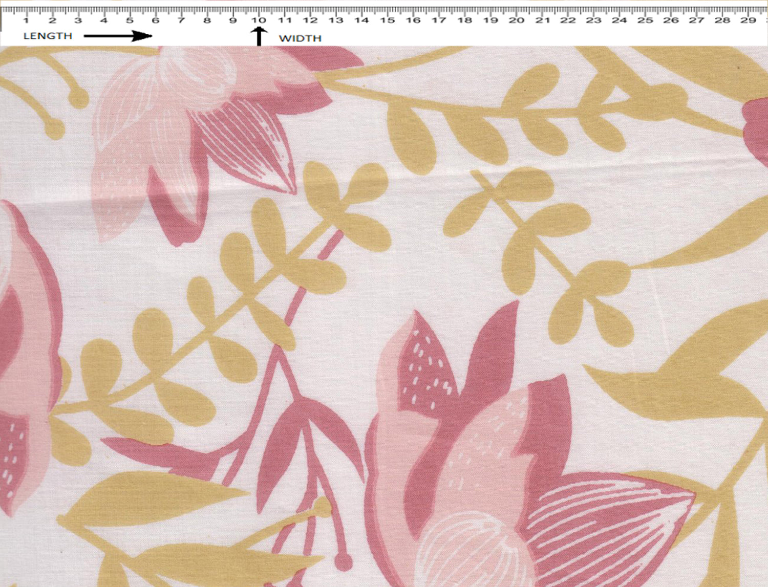 LILY PRINT {SUN WHITE-PALE CELERY-BEETLE PINK-CHERRY PINK}  (Cambric)