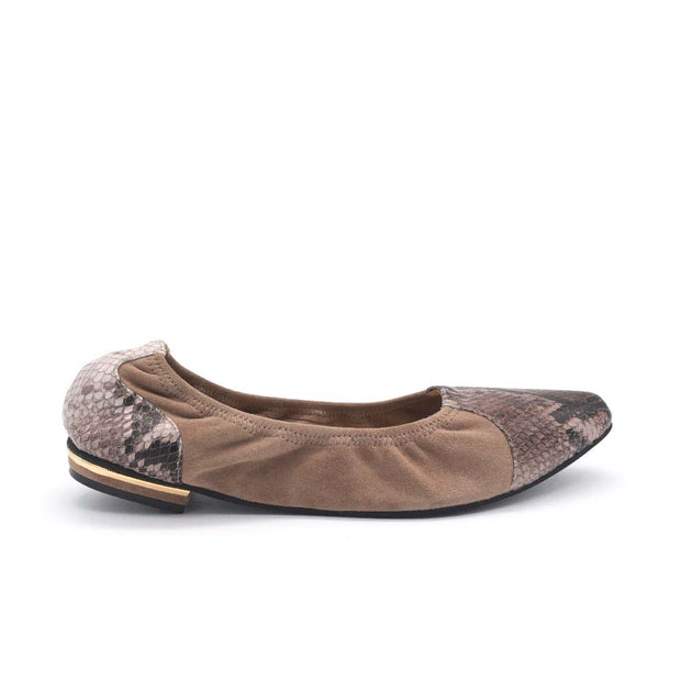 Coluber Flexi Brown