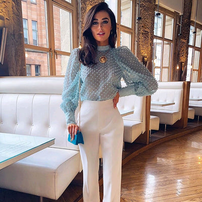 Elegant Dots Emebroidery Transparent Blouse Women Puff Long Sleeve