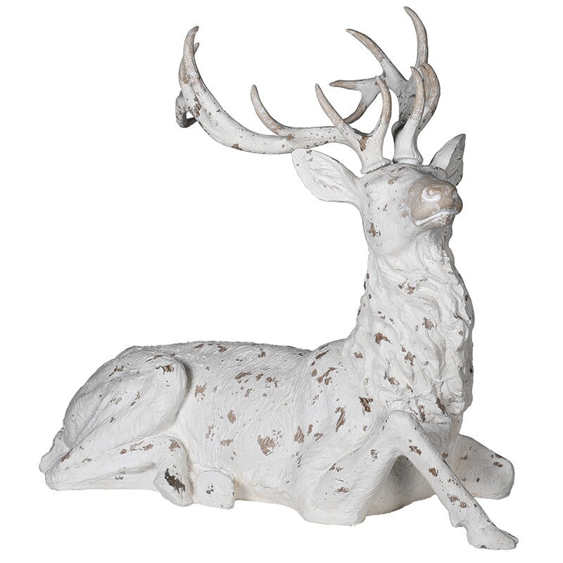 Large White Washed Deer