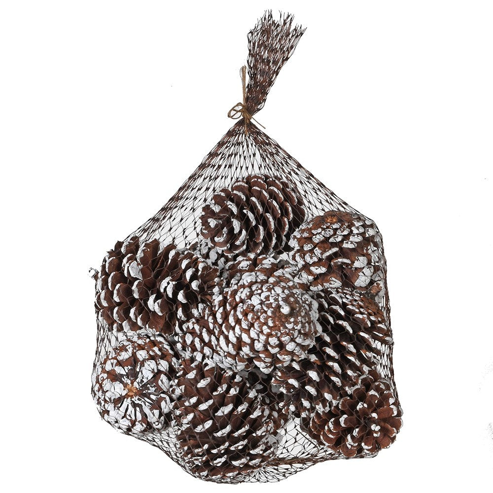Bag of white tipped pinecones