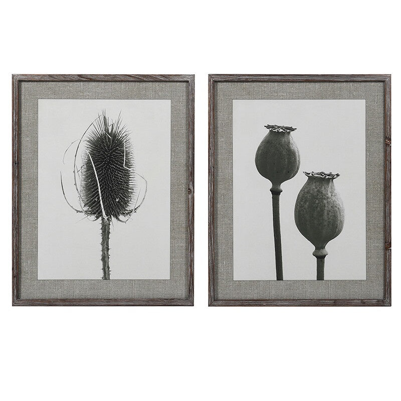Set of 2 poppy and teasel flower prints