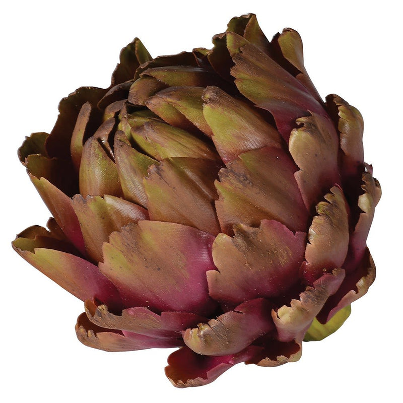 Purple And Green Artichoke