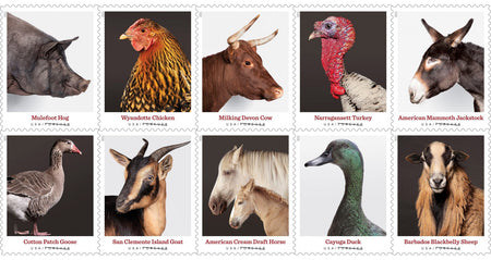 USPS Releases Heritage Breed Stamps