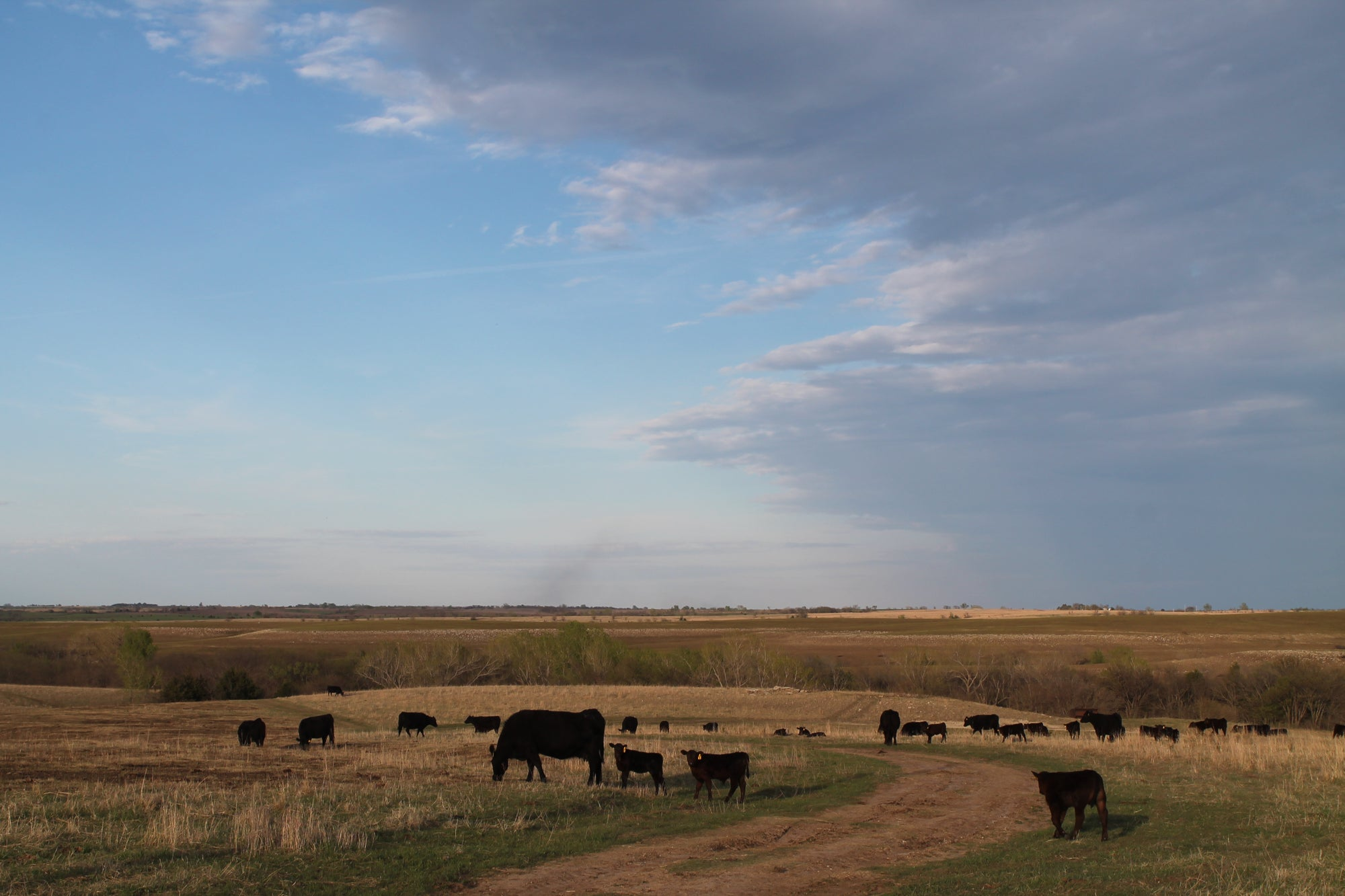 Good Farm — Heritage breeds raised in the Kansas Flint Hills