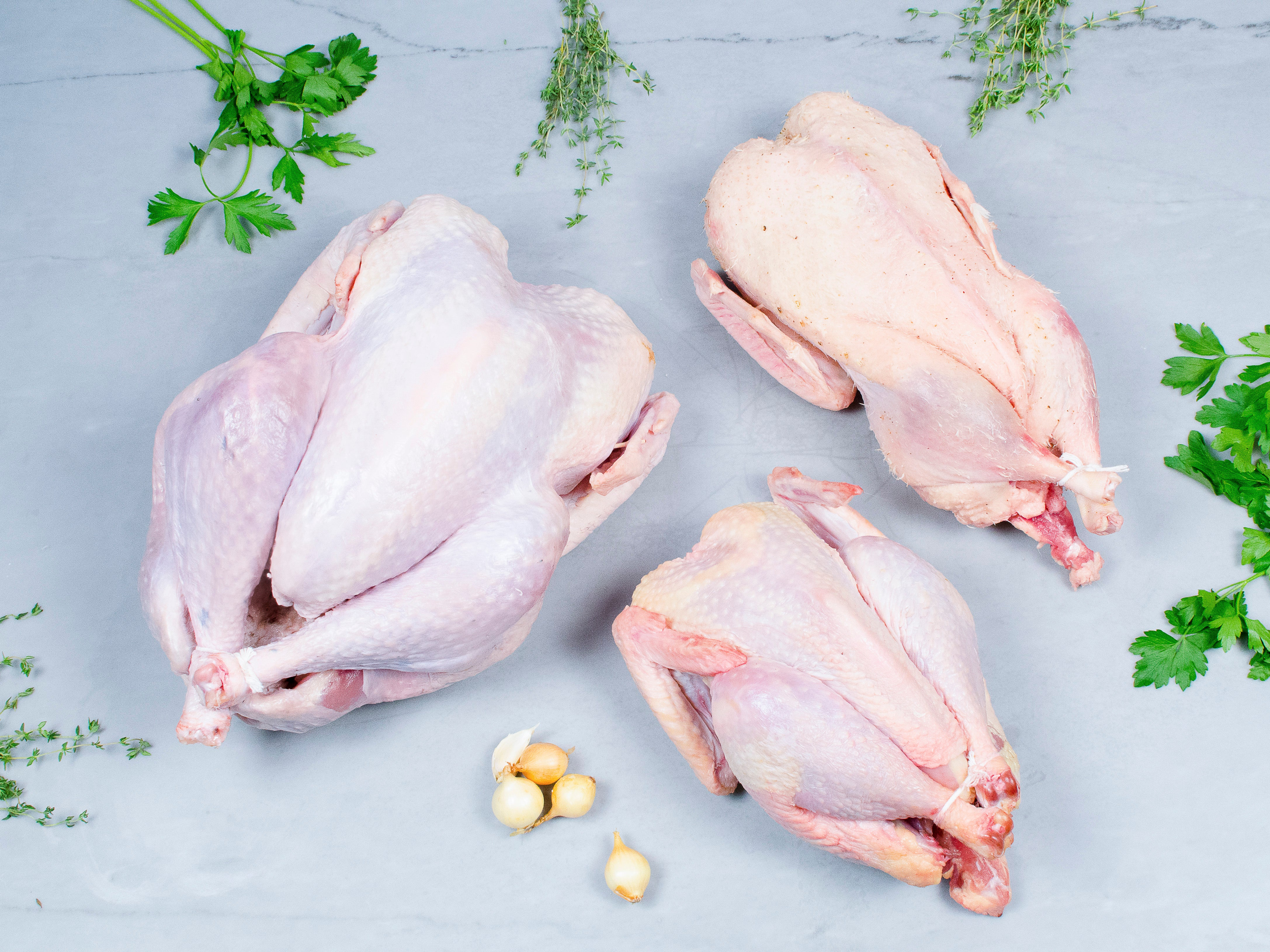 Our Breeds – Heritage Foods