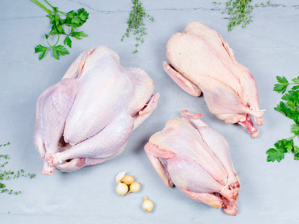 POULTRY LOVER'S PACKAGE — Aylesbury Duck, Heritage Turkey, New Hampshire Chicken