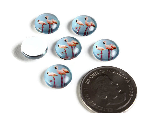 12mm Blue Pink Flamingo cabochons - 12mm tropical cabochons - 12mm flat round cabochon - 12mm glass cabochon - 12mm Printed Cabochons (2130)