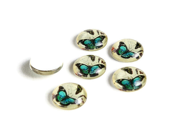 12mm Blue Butterfly cabochons - 12mm cabochon - flat round cabochon - 12mm glass cabochon - 12mm Printed Cabochons (2143)