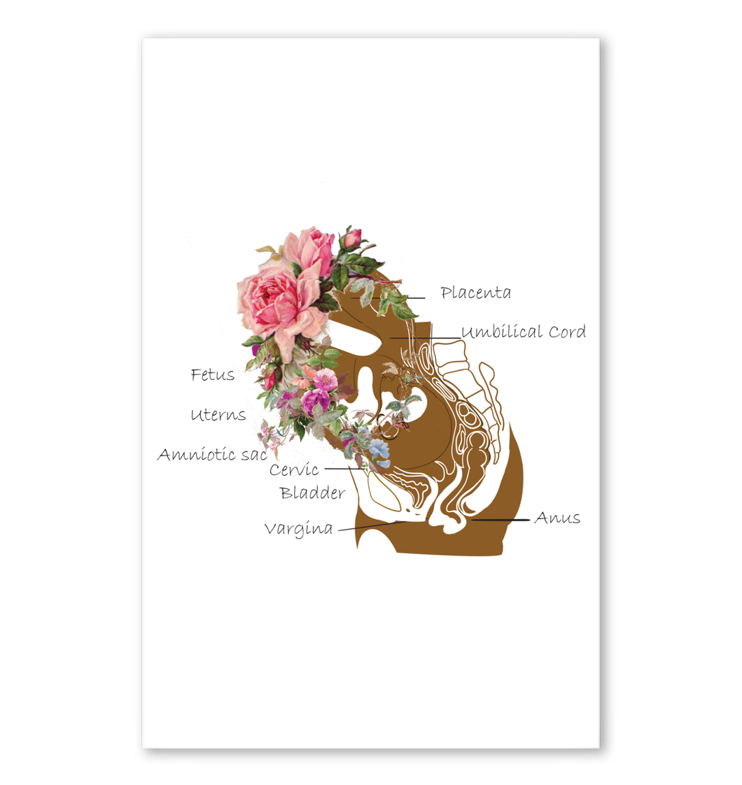 Pregnancy Gift Poster