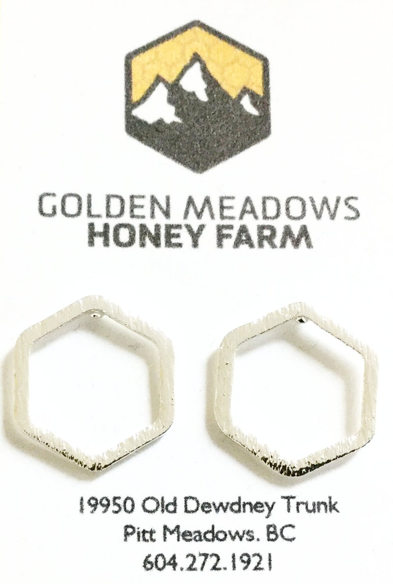 Hexagon Earrings ~