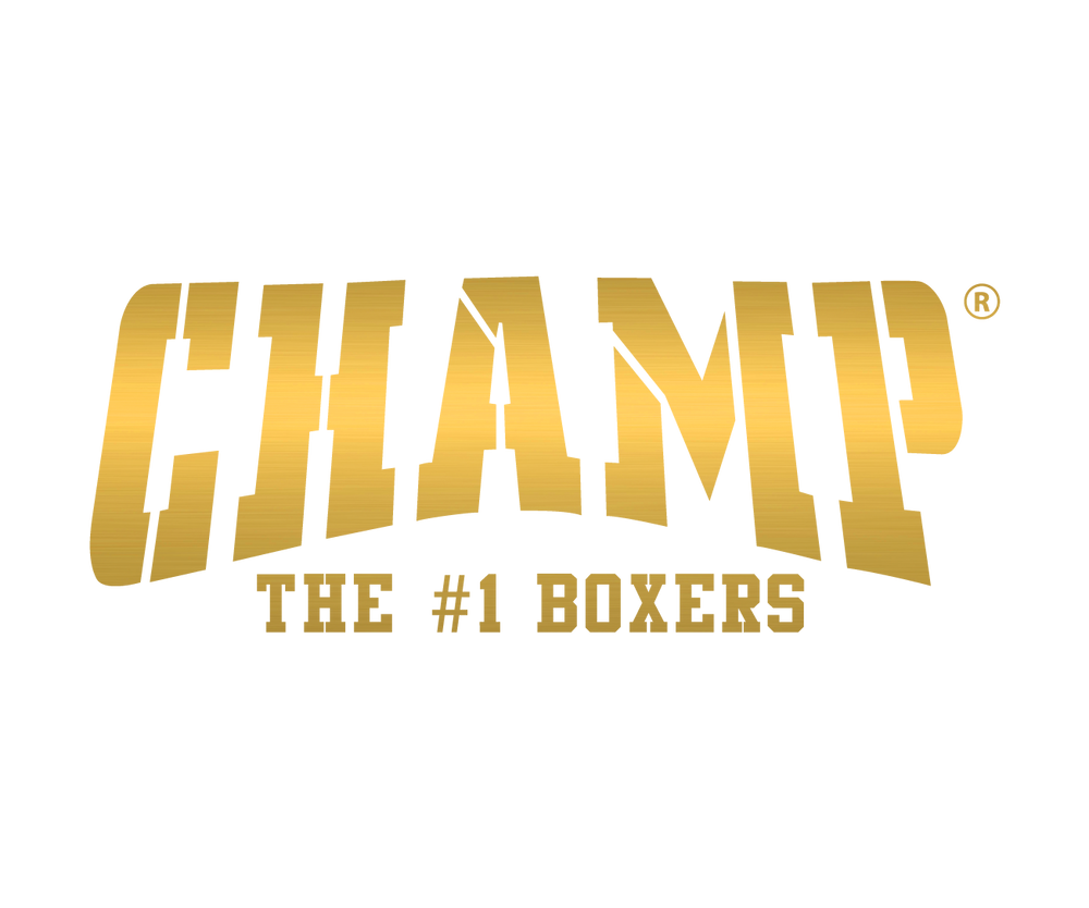 Image result for champ boxers logo
