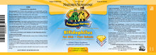 Nature's Sunshine Products, Sunshine Heroes Bifidophilus (90 Chewable Tablets)