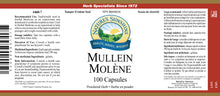 Nature's Sunshine Products, Mullein, 290 mg (100 Capsules)