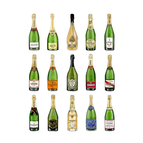 Champagne Collection Fine Art Print