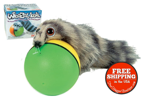 Dy.toy Weazel Ball - Battery Operated Toy For Kids Adults Dogs Or Cats - Pet