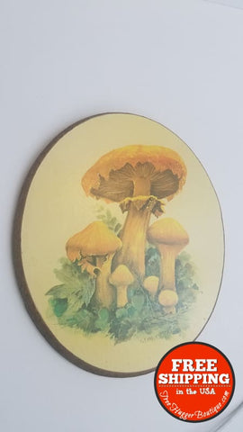 Vintage Oval Mushroom Wooden 1970S Wall Plaque By Woodcraftery - Wall Art