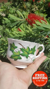 Vintage Bone China Tea Cup By Royal Kent 8258 W/ivy - Home Decor