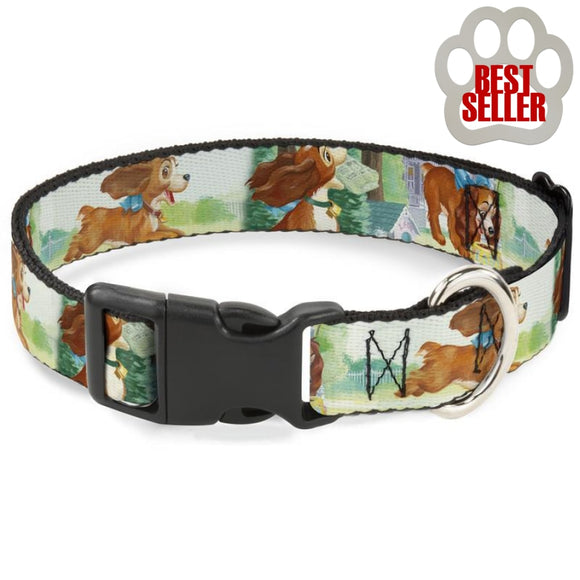 Disney Lady Collar And Leash Collars