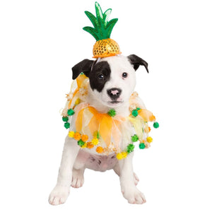 Pineapple Hat And Collar Set Pet Costume Costumes