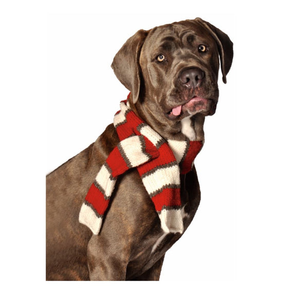 Red Striped Scarf Clothing & Accessories