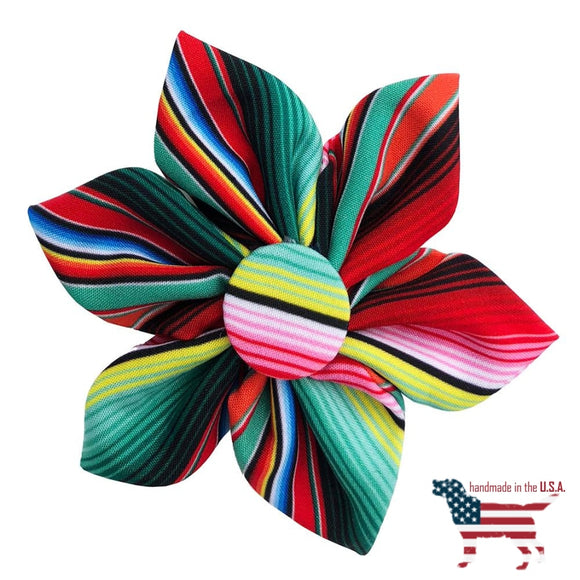 Sassy Stripes Collar Pinwheel Collection - 5 Styles Small 2.5 / Serape Bows And Neckware