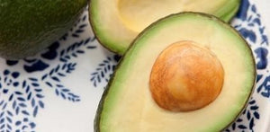 Avocado Seed Health Benefits