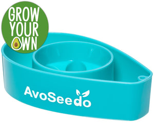 AvoSeedo DIY Blue Avocado Tree Growing Bowl