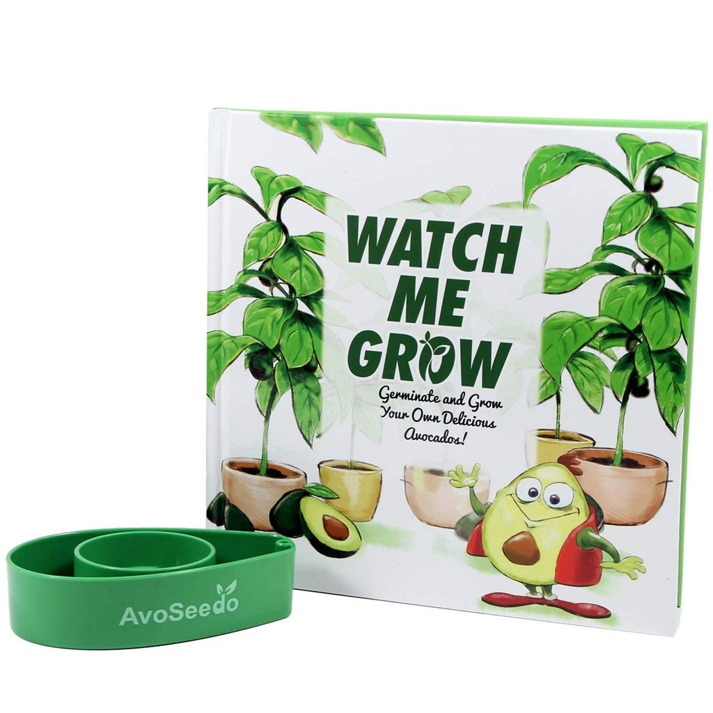 AvoSeedo Avocado Tree Growing Kit for Family Fun