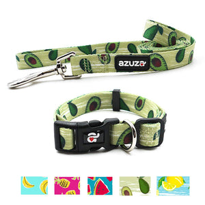 azuza Avocado Dog Collar Leash Set: Large