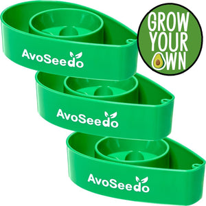 AvoSeedo DIY Green Avocado Tree Growing Bowls (3 Pack)