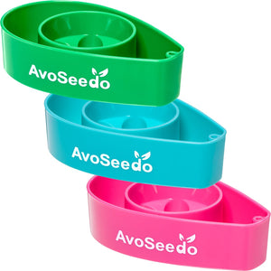 AvoSeedo DIY Avocado Tree Growing Bowls (3 Pack)
