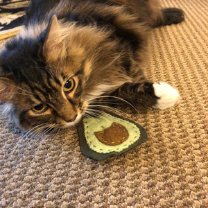 Avocado Organic Catnip Cat Toys: 2 Pack