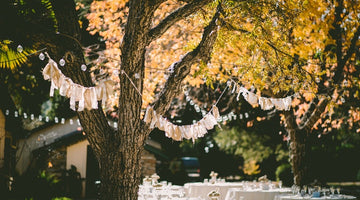 Pink and Blue are the New Fall Colors - Plan Your Fall Gender Reveal Party with These 3 Party Tips