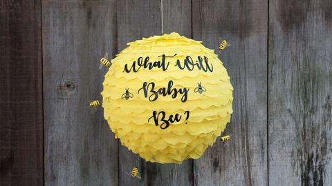 Bee hive prop to celebrate a gender reveal.