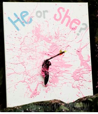 "A painting canvas with ""he or she"" written on it, and pink paint splattered all over it."