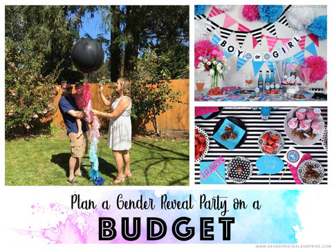 "Collage of gender reveal party imagery with the words, ""plan a gender reveal party on a budget."""